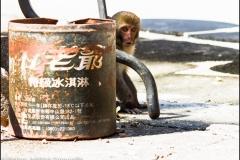 Taiwan-dag-100-7