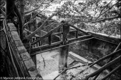Anping Tree House - 安平樹屋 14