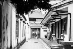 Taiwan-dag-72-1