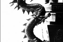 Taiwan-dag-74-9